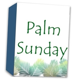 Palm Sundy