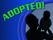 Adopted! Single Lesson Curriculum