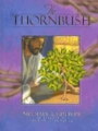 Kidzmatter's <i>The Thornbush</i> Book