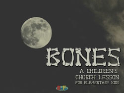 RealFun<i> Bones</i> Curriculum Download